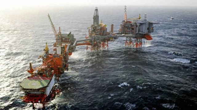 Exploração petrolífera em Timor tem impacto negativo nas baleias