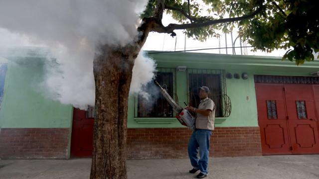 Brasil autoriza venda de testes que detetam Zika, chikungunya e dengue