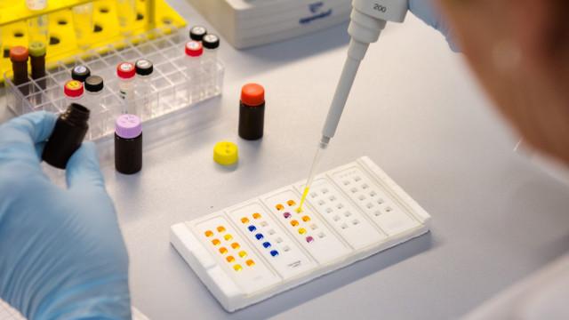 Investigação em Bragança desenvolve substitutos naturais de químicos