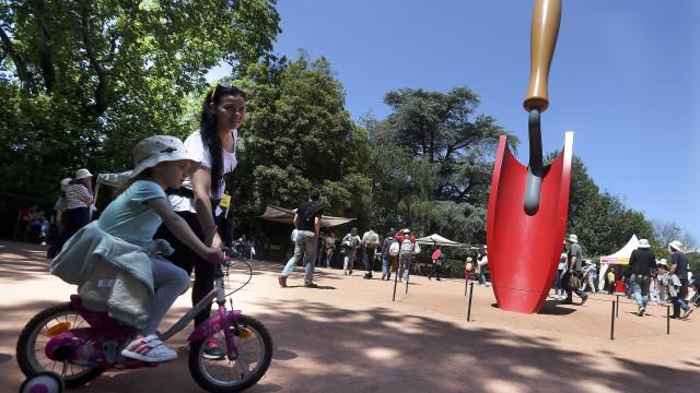 Aveiro anuncia protocolo com Serralves para formação cultural dos jovens