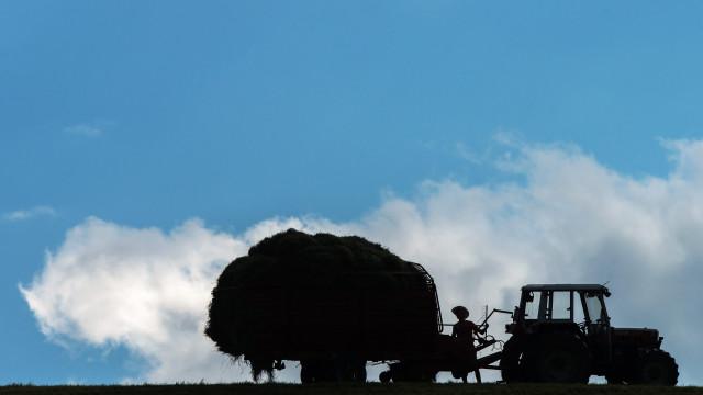 IRS: PS quer que novo regime exclua agricultores e pequenos comerciantes