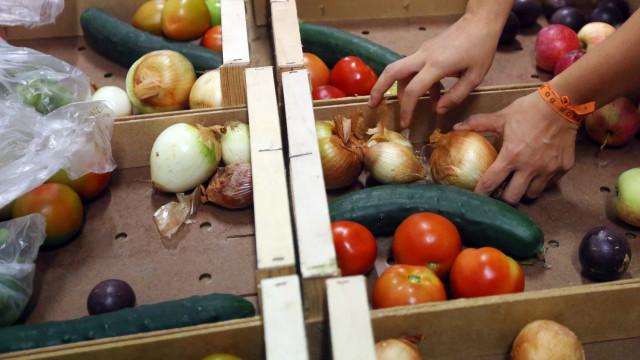 Exportações de frutas, legumes e flores subiram 23% até junho