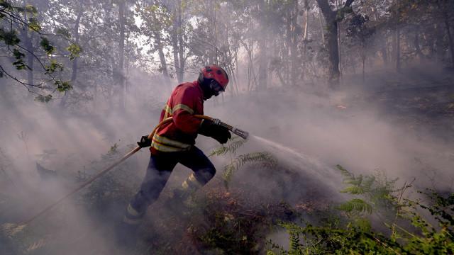 Casas arderam em Mação, mais de uma dezena de aldeias evacuadas hoje
