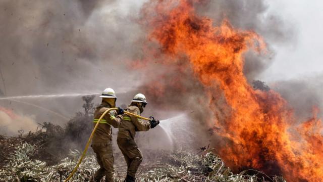 Exército mobliza quase 600 militares e 116 viaturas no combate aos fogos