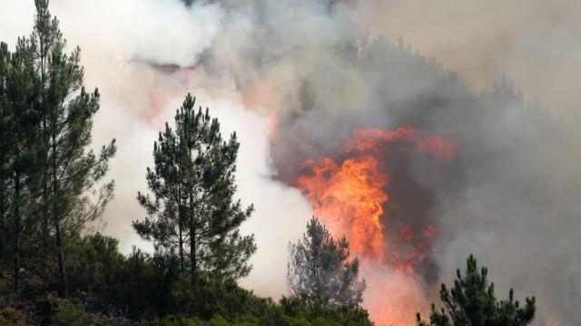 IPMA já respondeu a primeiro-ministro sobre fogo de Pedrógão Grande