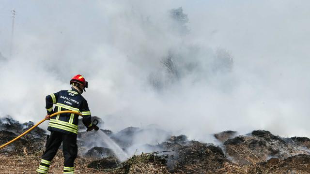 Mais de 1.800 bombeiros e 690 viaturas combatem incêndios