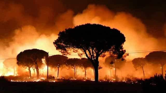 Sobe para dois mil o número de desalojados devido ao incêndio em Espanha