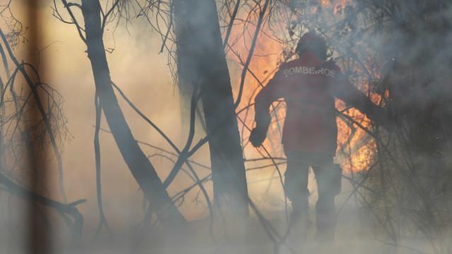 Mais de 200 operacionais combatem fogo no concelho de Gavião