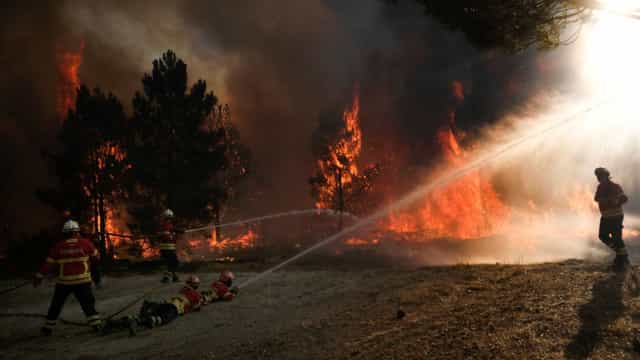 Fogo junto a Coimbra não ameaça habitações, garante Proteção Civil