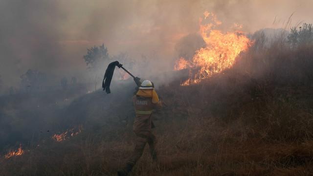 Dominado fogo que lavrava desde quarta-feira em Penacova
