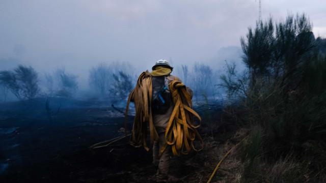 Vento dificulta combate e obriga a reforçar meios no fogo da Sertã