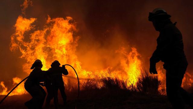 AE13 cortada na zona Almalaguês devido a fogo em Coimbra