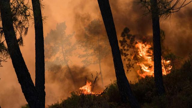 Fogo na Sertã já levou à retirada de 158 pessoas de casa