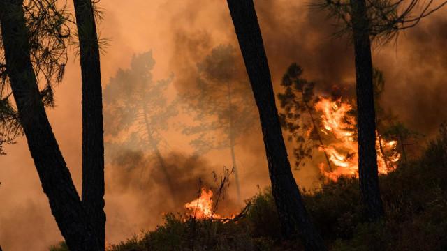 Presumível incendiária de Castelo Branco ficou em prisão preventiva