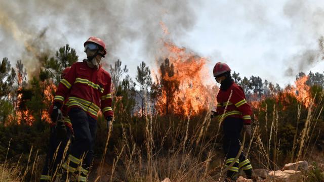 Incêndios: Mais de 122 mil hectares consumidos desde o início do ano