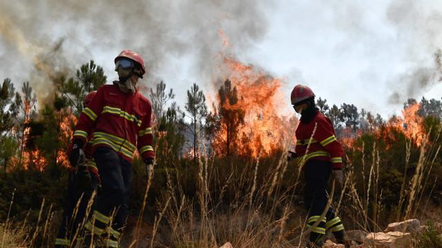Fogo de Mação entra em Vila Velha de Ródão e obriga a evacuar Gardete