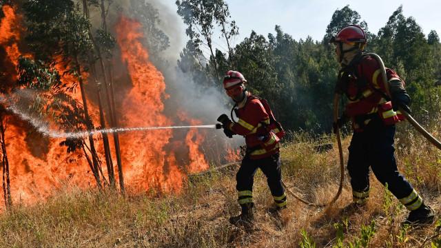 """Mação vive situação """"dramática"""" e inicia evacuação de Vale de Amêndoa"""