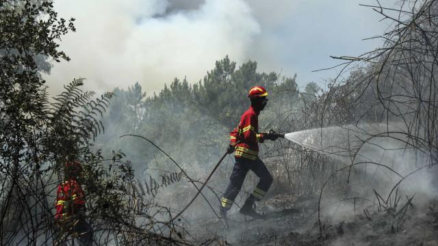 Seis meios aéreos e 89 bombeiros combatem fogo em Mirandela