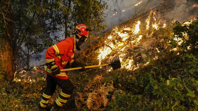 Novo máximo de 268 fogos registado no sábado