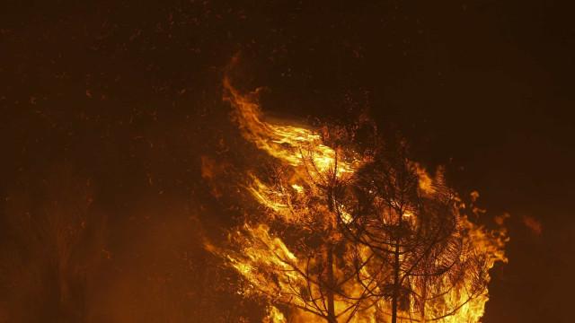 """Fogo no Fundão ganha força """"incalculável"""", Soalheira rodeada pelas chamas"""