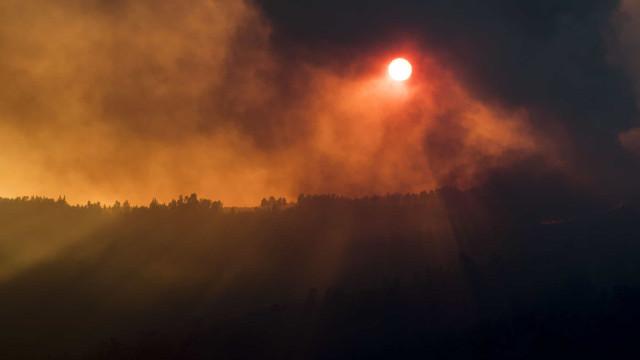 Quase 1.200 operacionais combatem fogos em Bragança e Castelo Branco