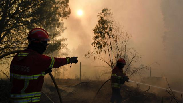 Mais de 400 bombeiros combatem fogo em Mação