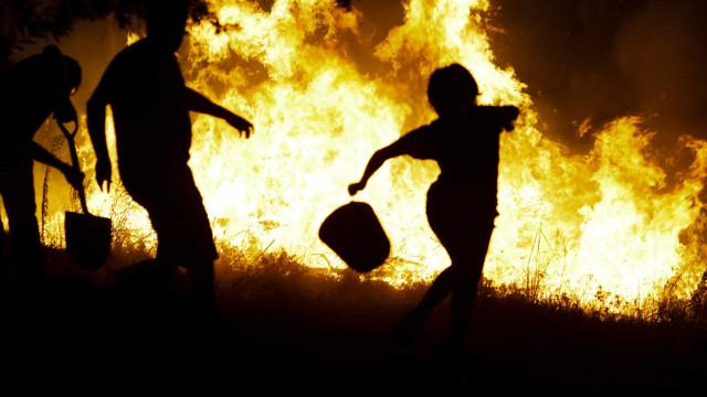 PJ detém suspeitos de atearem fogos em Cabeceiras de Basto e Vila Real