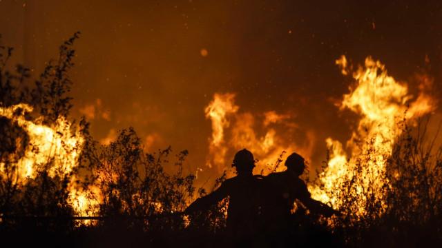 Três bombeiros feridos no incêndio de Pinhel, na Guarda