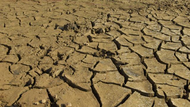 Água salgada pode substituir água doce e afetar agricultura