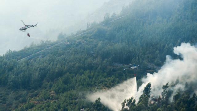 Empresa lusa e parceira alemã propõem novo sistema para combater fogos