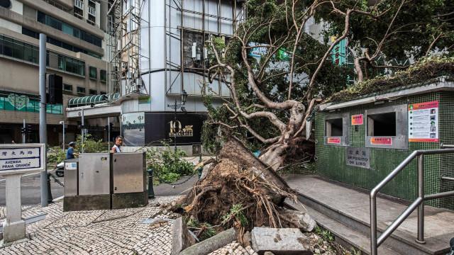 Subiu número de mortos provocados pelo tufão Hato