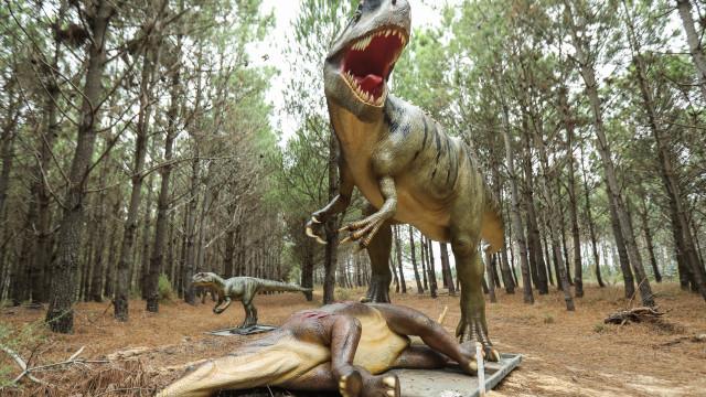 Dino Parque da Lourinhã ultrapassou 350 mil visitantes
