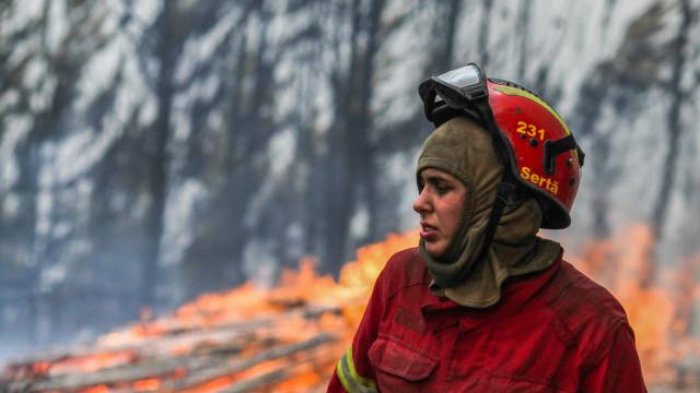 Fogo na Sertã está dominado, sem perigo para populações