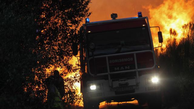 Incêndios: Mortágua ativa plano municipal de emergência