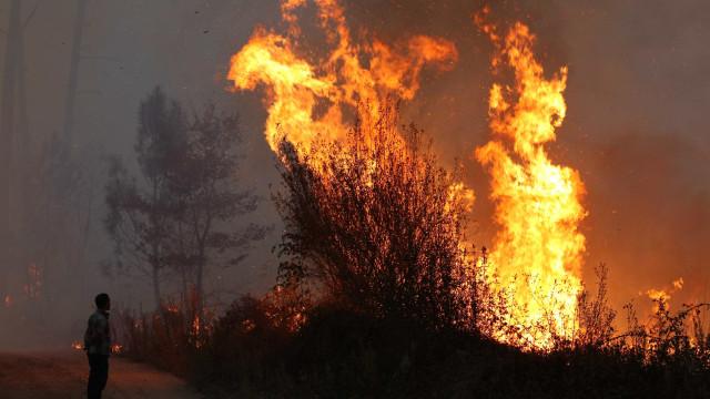Homem morreu no Sabugal cercado pelas chamas de queimada