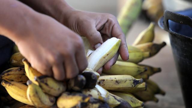 Moçambique inova com farinha de banana que aproveita todo o fruto