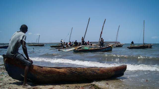 No Norte de Moçambique pedem-se reforços, um mês após ataques