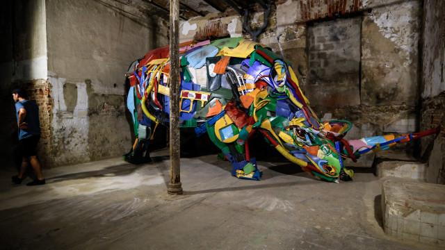 Projeto para Martim Moniz inclui peças dos artistas Bordalo II e Kobra