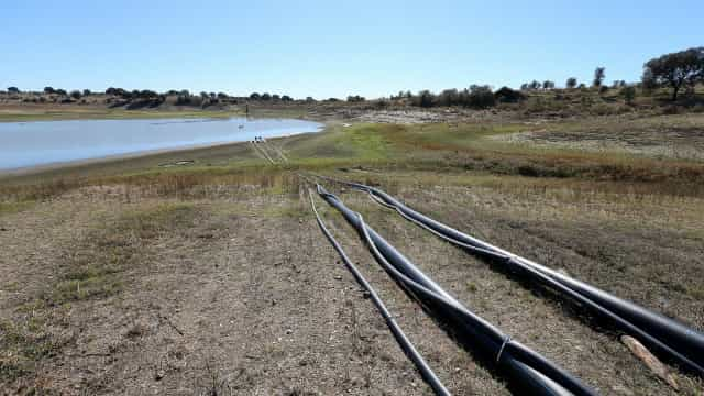 """São """"insatisfatórias"""" medidas para combater efeitos da seca e incêndios"""