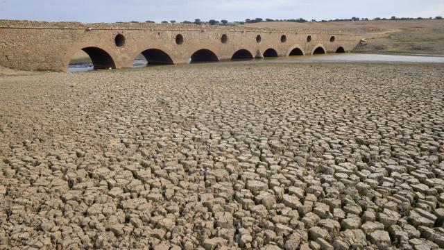 Agricultores querem conclusão do plano de rega do Alentejo