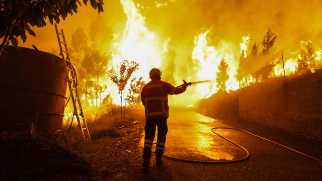 WWF pede que Portugal e Espanha se juntem na prevenção dos fogos