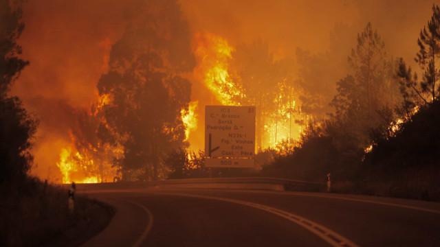 Relatório antecipa mais tempestades de fogo como a registada em Pedrógão