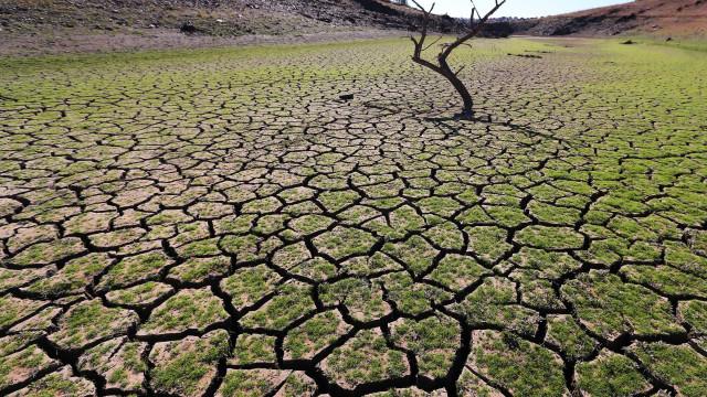 CAP quer plano de emergência para seca e Governo lembra medidas adotadas