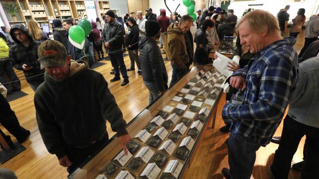 Californianos fazem fila para comprarem legalmente canábis