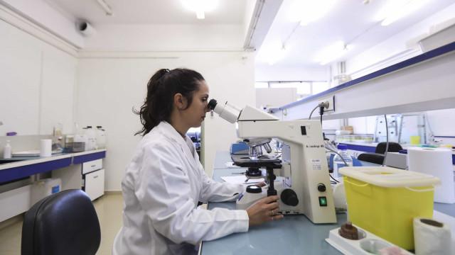 Investigação do INSA revela que ibuprofeno tem efeitos anticancerígenos