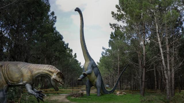 Dino Parque da Lourinhã à espera de 200 mil visitantes no primeiro ano