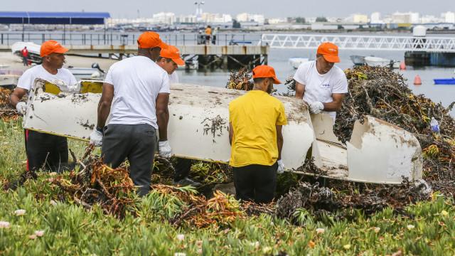 Reclusos preparam nova vida com trabalho na ilha da Armona