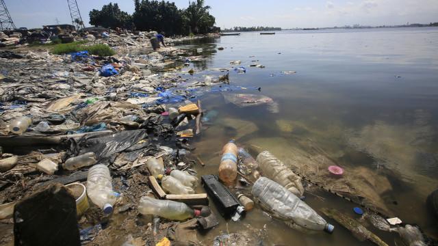 Hoje há apelo à mudança de comportamentos e luta contra plástico
