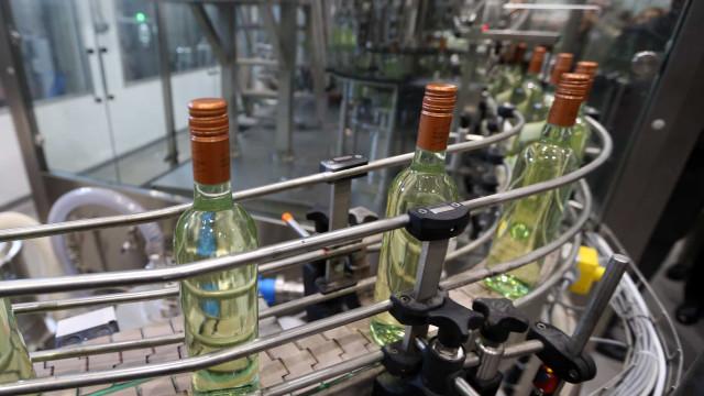 Produção de vinho sofre maior quebra dos últimos 20 anos