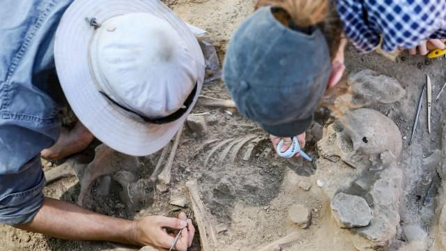 DGPC deverá contratar uma dezena de arqueólogos